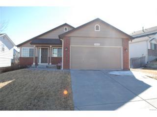 18632 Horse Creek Street, Parker, CO 80134 (#8203782) :: The Peak Properties Group
