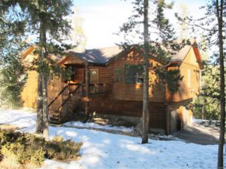 10972 Milliken Avenue, Conifer, CO 80433 (MLS #8270492) :: 8z Real Estate