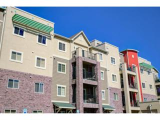 1044 Rockhurst Drive #405, Highlands Ranch, CO 80129 (#8295800) :: The Peak Properties Group