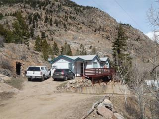 101 Brownell Street, Georgetown, CO 80444 (MLS #8327190) :: 8z Real Estate