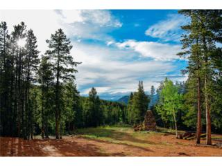 101 Bear Paw Road, Golden, CO 80403 (#8467536) :: Thrive Real Estate Group