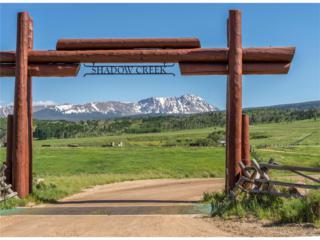 1421 Upper Mesa Trail, Silverthorne, CO 80498 (#8549195) :: The Peak Properties Group