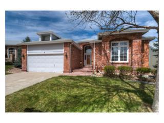 5 Birmingham Court, Highlands Ranch, CO 80130 (MLS #8552027) :: 8z Real Estate