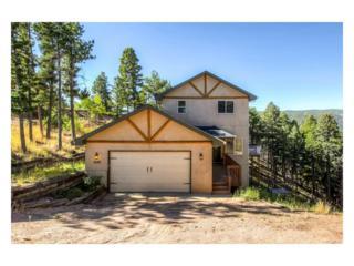 2639 Elk Park Road, Larkspur, CO 80118 (MLS #8601420) :: 8z Real Estate