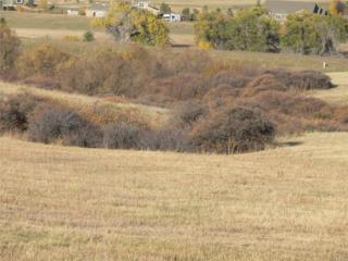 3116 Antelope Ridge Trail, Parker, CO 80138 (#8628711) :: The Peak Properties Group