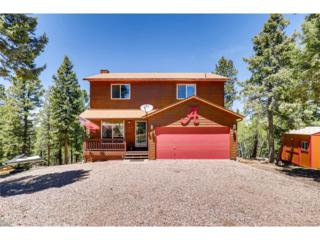 1569 County 512 Road, Divide, CO 80814 (MLS #8674875) :: 8z Real Estate