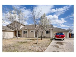 8380 Clayton Court, Thornton, CO 80229 (#8675280) :: Thrive Real Estate Group