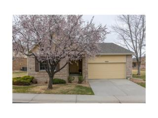 8991 Greenspointe Lane, Highlands Ranch, CO 80130 (MLS #8731254) :: 8z Real Estate
