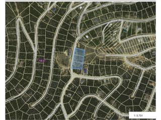 323 Alice Road, Idaho Springs, CO 80452 (MLS #8766222) :: 8z Real Estate