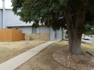 1105 W 112th Avenue A, Northglenn, CO 80234 (#8780779) :: The Peak Properties Group