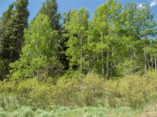 000 Mountain Meadows Drive, Black Hawk, CO 80422 (#8916468) :: Thrive Real Estate Group