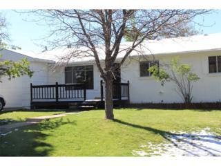 7102 S Birch Way, Centennial, CO 80122 (MLS #8929380) :: 8z Real Estate