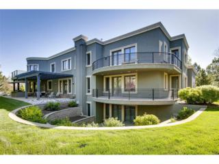 3 Sunflower Place, Cherry Hills Village, CO 80113 (MLS #8934981) :: 8z Real Estate