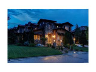 9584 S Shadow Hill Circle, Lone Tree, CO 80124 (#8937572) :: The Peak Properties Group