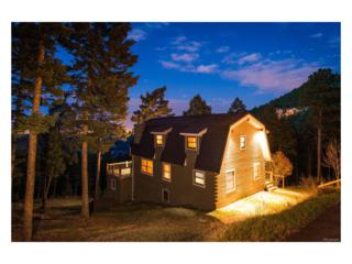 25633 Independence Trail, Evergreen, CO 80439 (MLS #8967574) :: 8z Real Estate
