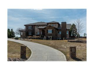 9430 Sara Gulch Circle, Parker, CO 80138 (#8974378) :: The Peak Properties Group