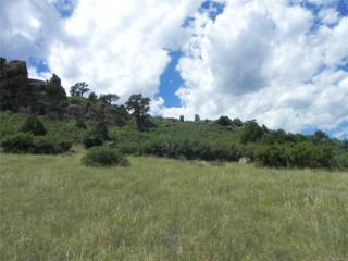 5590 Country Club Drive, Larkspur, CO 80118 (MLS #8990197) :: 8z Real Estate
