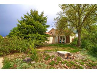 2254 S Ellis Street, Lakewood, CO 80228 (MLS #8994881) :: 8z Real Estate