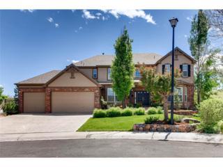 10662 Edgemont Place, Highlands Ranch, CO 80129 (MLS #9005456) :: 8z Real Estate