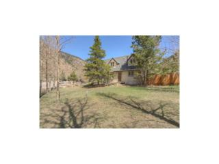 1580 Main Street, Georgetown, CO 80444 (MLS #9011351) :: 8z Real Estate