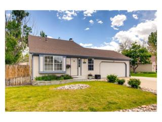 8522 Rabbitbrush Way, Parker, CO 80134 (MLS #9165650) :: 8z Real Estate