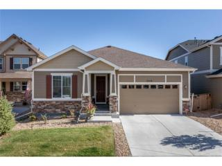 3018 Riverwood Way, Castle Rock, CO 80109 (#9338025) :: The Peak Properties Group