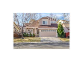 3311 Blue Grass Circle, Castle Rock, CO 80109 (#9445120) :: The Peak Properties Group