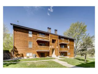 429 Wright Street #211, Lakewood, CO 80228 (MLS #9490256) :: 8z Real Estate