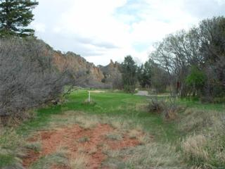 6040 Country Club Drive, Larkspur, CO 80118 (MLS #9543281) :: 8z Real Estate