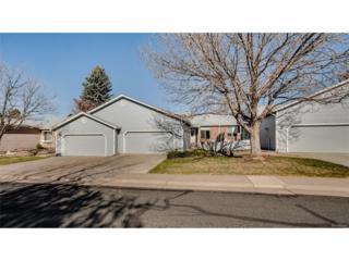 35 Shetland Court, Highlands Ranch, CO 80130 (MLS #9611033) :: 8z Real Estate