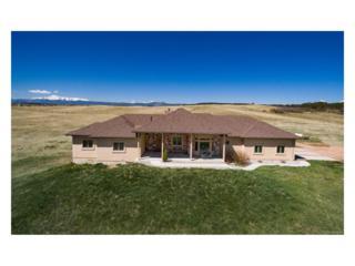 15125 Spring Valley Road, Larkspur, CO 80118 (MLS #9630939) :: 8z Real Estate