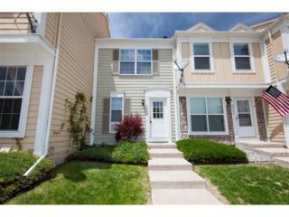 9539 W Coal Mine Avenue D, Littleton, CO 80123 (MLS #9749927) :: 8z Real Estate