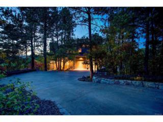 347 Silver Cloud Place, Castle Rock, CO 80108 (#9776212) :: The Peak Properties Group