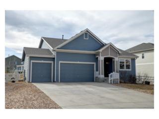 5457 Echo Hollow Street, Castle Rock, CO 80104 (#9790603) :: The Peak Properties Group