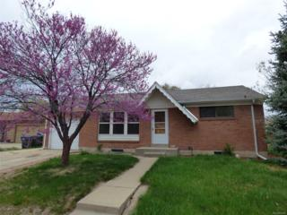 10729 Ogden Street, Northglenn, CO 80233 (#9863843) :: The Peak Properties Group