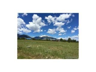 Cr 261, Nathrop, CO 81236 (#C236454) :: The Peak Properties Group
