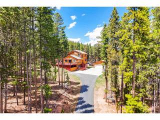 9145 Black Mountain Drive, Conifer, CO 80433 (MLS #5401311) :: 8z Real Estate