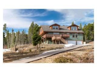 237 Tschaikovsky Road, Black Hawk, CO 80422 (#5753736) :: Thrive Real Estate Group