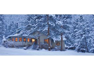 1766 Lower Broadview Road, Estes Park, CO 80517 (MLS #5969552) :: 8z Real Estate