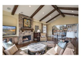 4 Flowerburst Way, Highlands Ranch, CO 80126 (#6648438) :: The Peak Properties Group