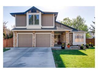 5721 S Ouray Court, Centennial, CO 80015 (MLS #6677868) :: 8z Real Estate