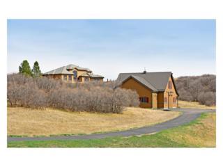 2802 Big Bear Drive, Sedalia, CO 80135 (MLS #8075331) :: 8z Real Estate