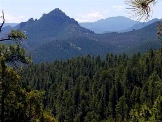 13664 S Baird Road, Conifer, CO 80433 (MLS #8152266) :: 8z Real Estate