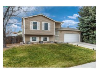 17618 Snowberry Way, Parker, CO 80134 (#8753773) :: The Peak Properties Group