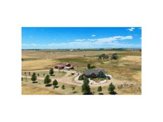 18983 County Road 22, Fort Lupton, CO 80621 (MLS #9622352) :: 8z Real Estate