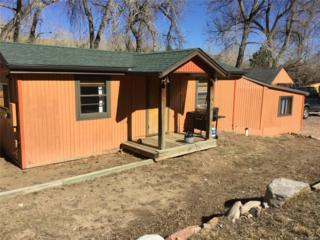 110 Clear Creek Lane, Golden, CO 80403 (MLS #2163101) :: 8z Real Estate