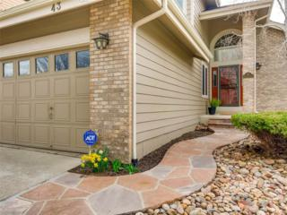 43 S Indiana Place, Golden, CO 80401 (#3982811) :: The Peak Properties Group