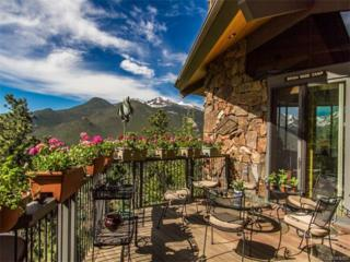 2725 Cedarcliff Drive, Estes Park, CO 80517 (MLS #3737190) :: 8z Real Estate