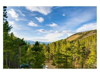 451 Mountain View Drive, Idaho Springs, CO 80452 (MLS #4844624) :: 8z Real Estate