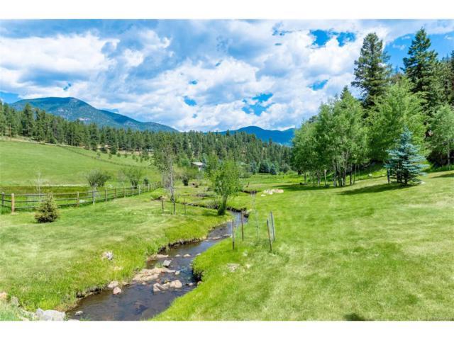924 Yankee Creek Road, Evergreen, CO 80439 (MLS #8266553) :: 8z Real Estate